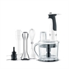 SAGE BSB530 THE CONTROL GRIP ALL IN ONE STAVBLENDER